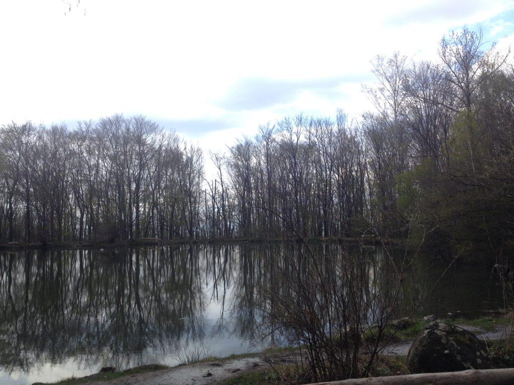 Lake in Vitosha Mountain
